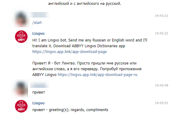 как работает lingvobot