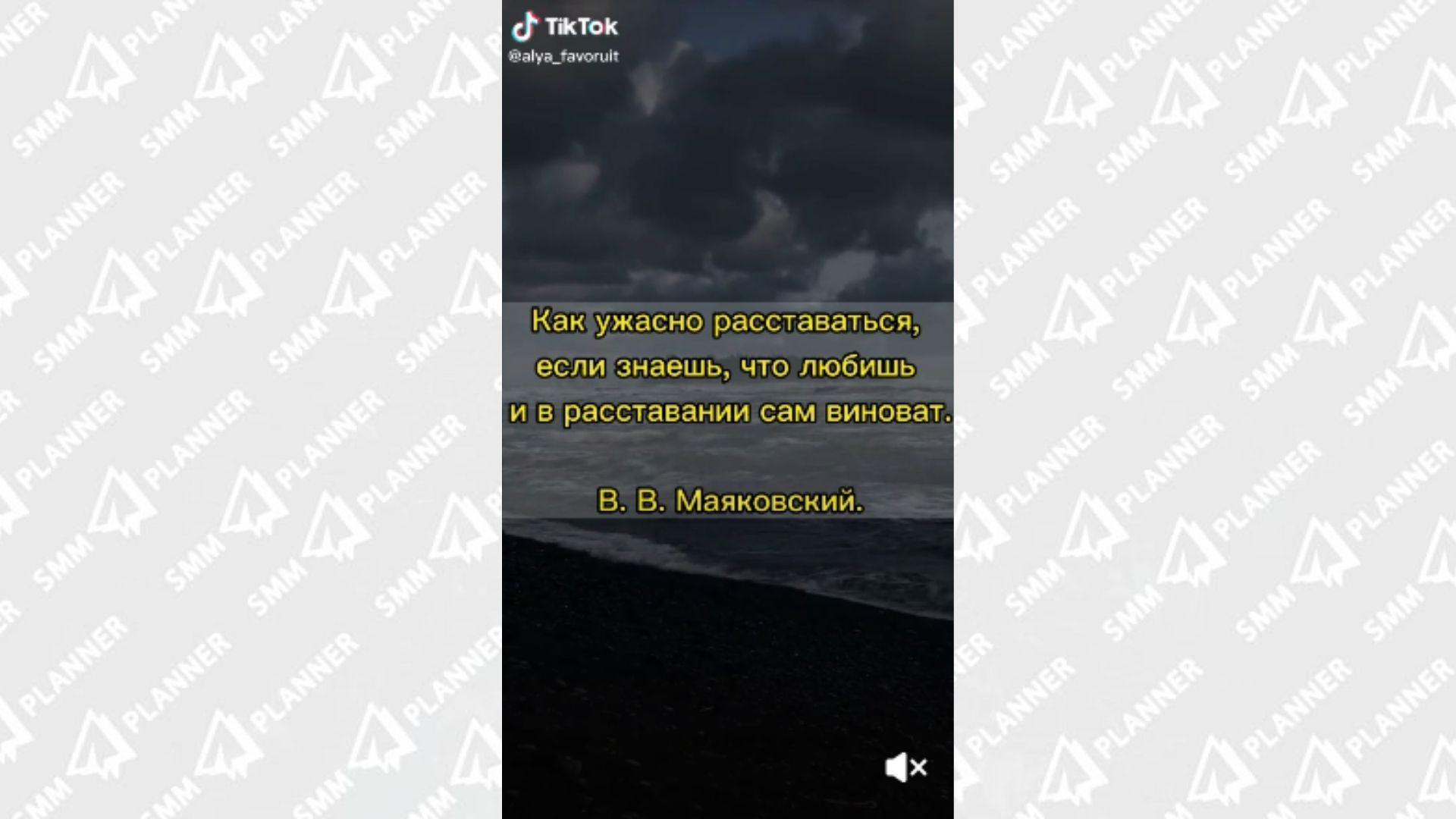 На каждом видео в ТикТоке можно увидеть мерцающий водяной знак, показывающий принадлежность ролика к соцсет