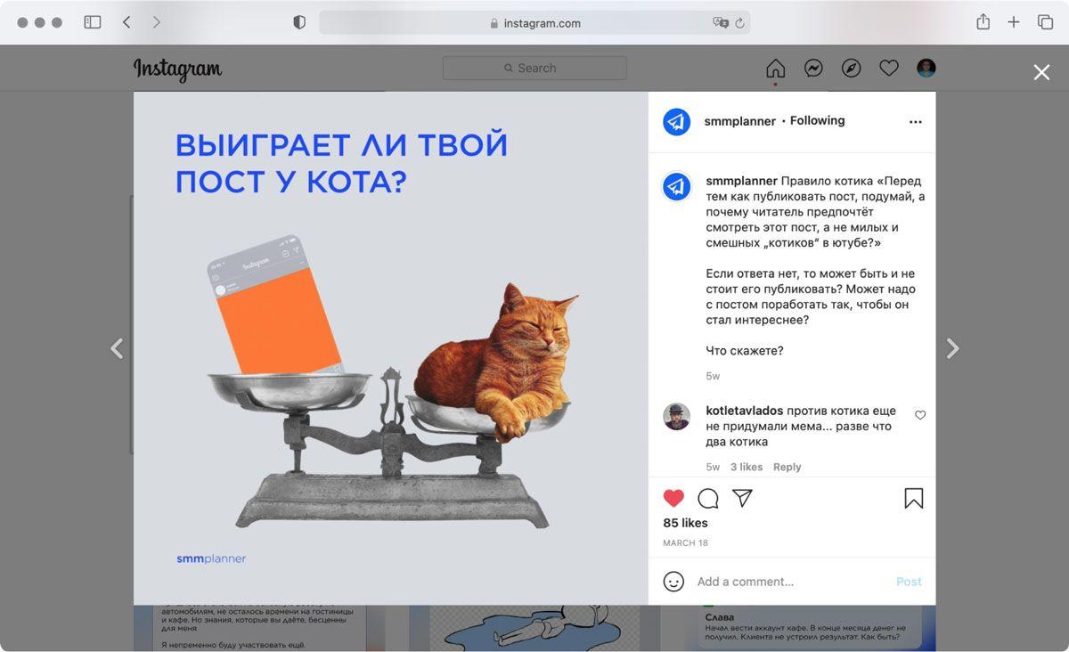 Тест «Котика» — в Инстаграме SMMplanner об этом рассказали