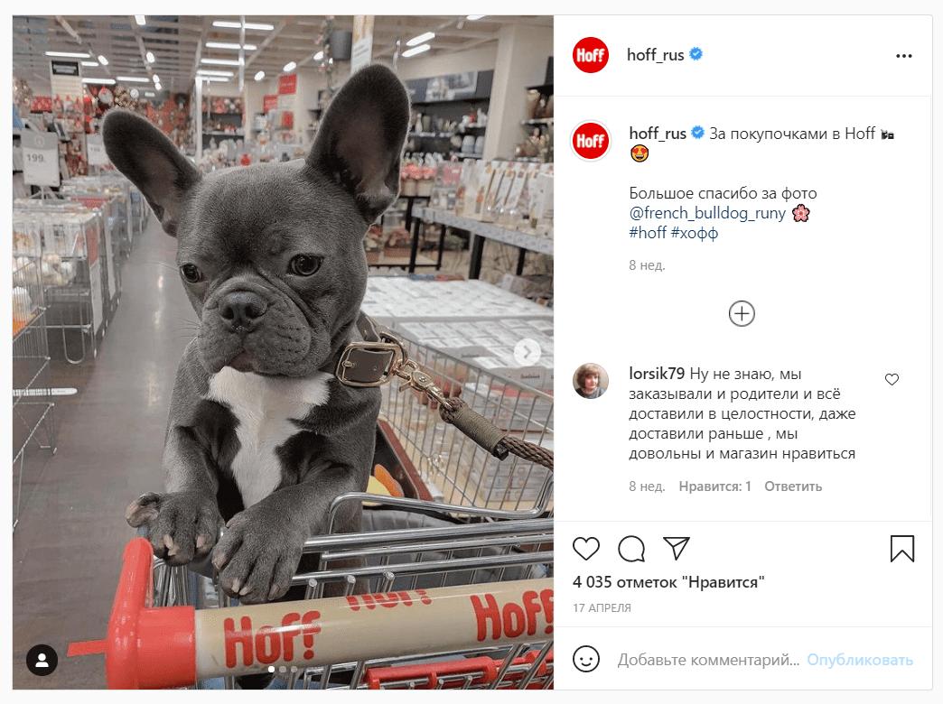 Что бы ни говорили, а фотографии животных в соцсетях по-прежнему привлекают внимание и вызывают умиление. Ссылка на пост