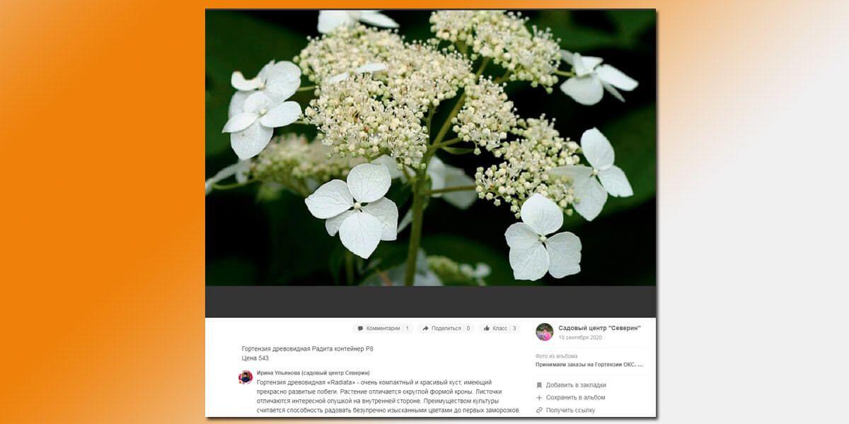 Пример публикации из группы интернет-магазина товаров для садоводов