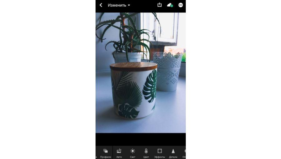 В «Лайтруме» можно создать свой пресет и обрабатывать в нём все фото