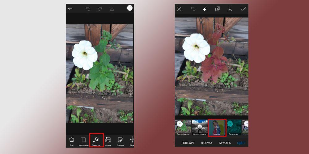 @nevzorovakati изменила цвета фона, что существенно «оживило» фото
